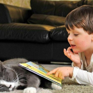 Животные - помощники в воспитании детей