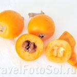 Мушмула японская /Nespera субтропический фрукт.