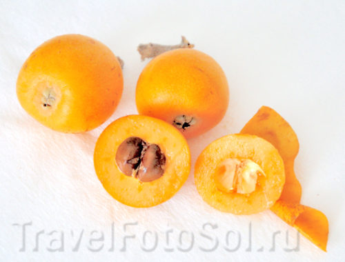 Мушмула японская Nespera субтропический фрукт.