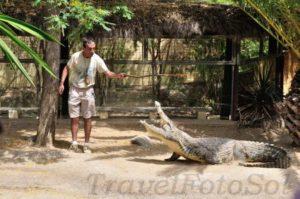 Тематический парк крокодилов Torremolinos