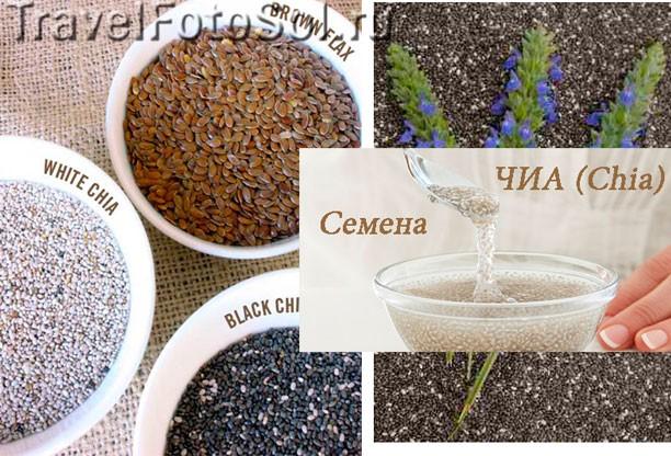 Семена Чиа (Chia) – полезные свойства
