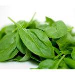 """Рецепт «Овощное рагу из шпината"""""""
