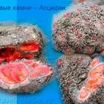 Живые камни – Асцидии